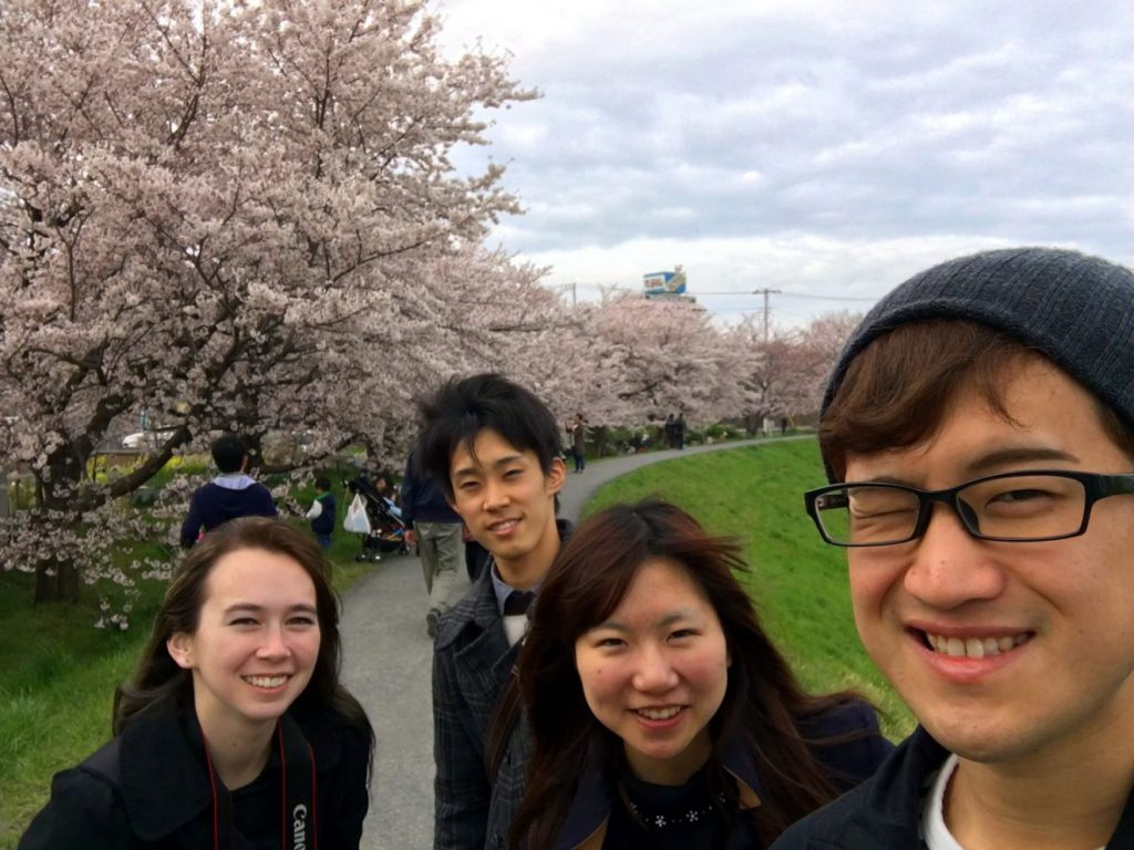 Kuromegawa Cherry Blossoms