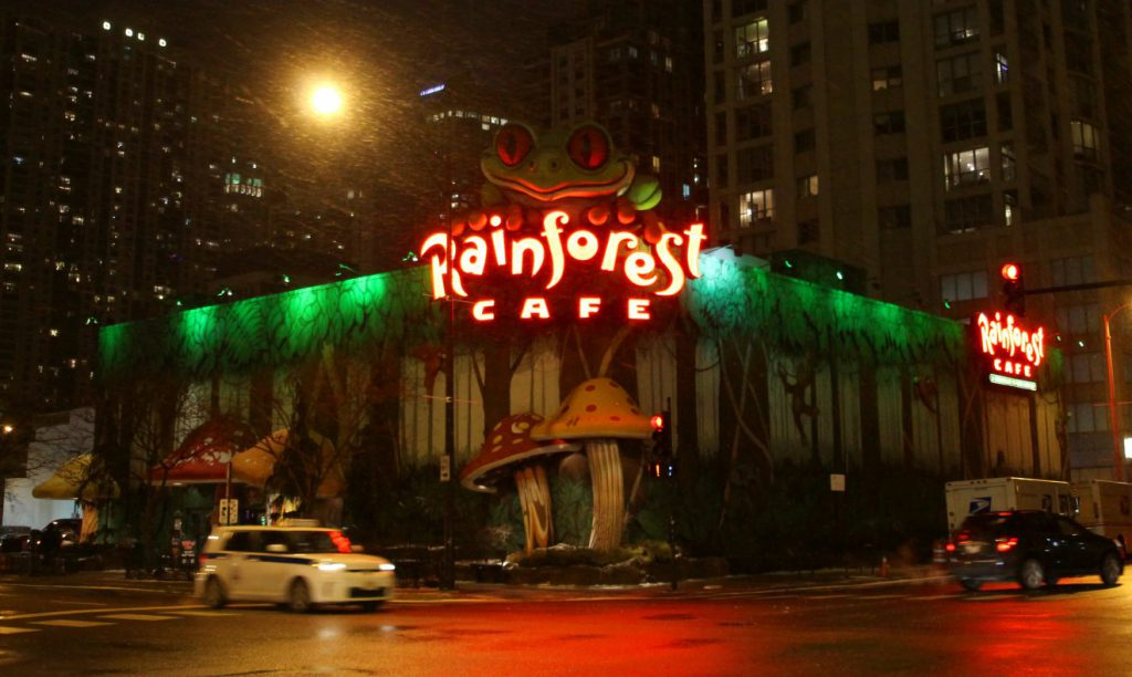 Rainforest Cafe Chicago | Footsteps of a Dreamer