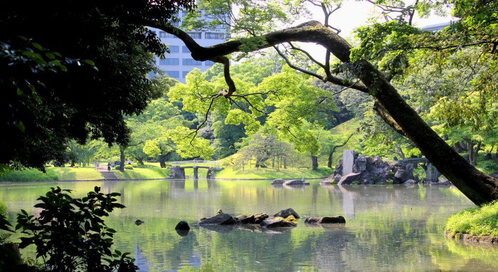 Koishikawa Korakuen, Tokyo, Japan | Footsteps of a Dreamer
