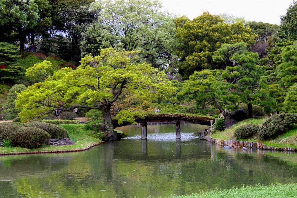 Rikugien, Tokyo, Japan | Footsteps of a Dreamer