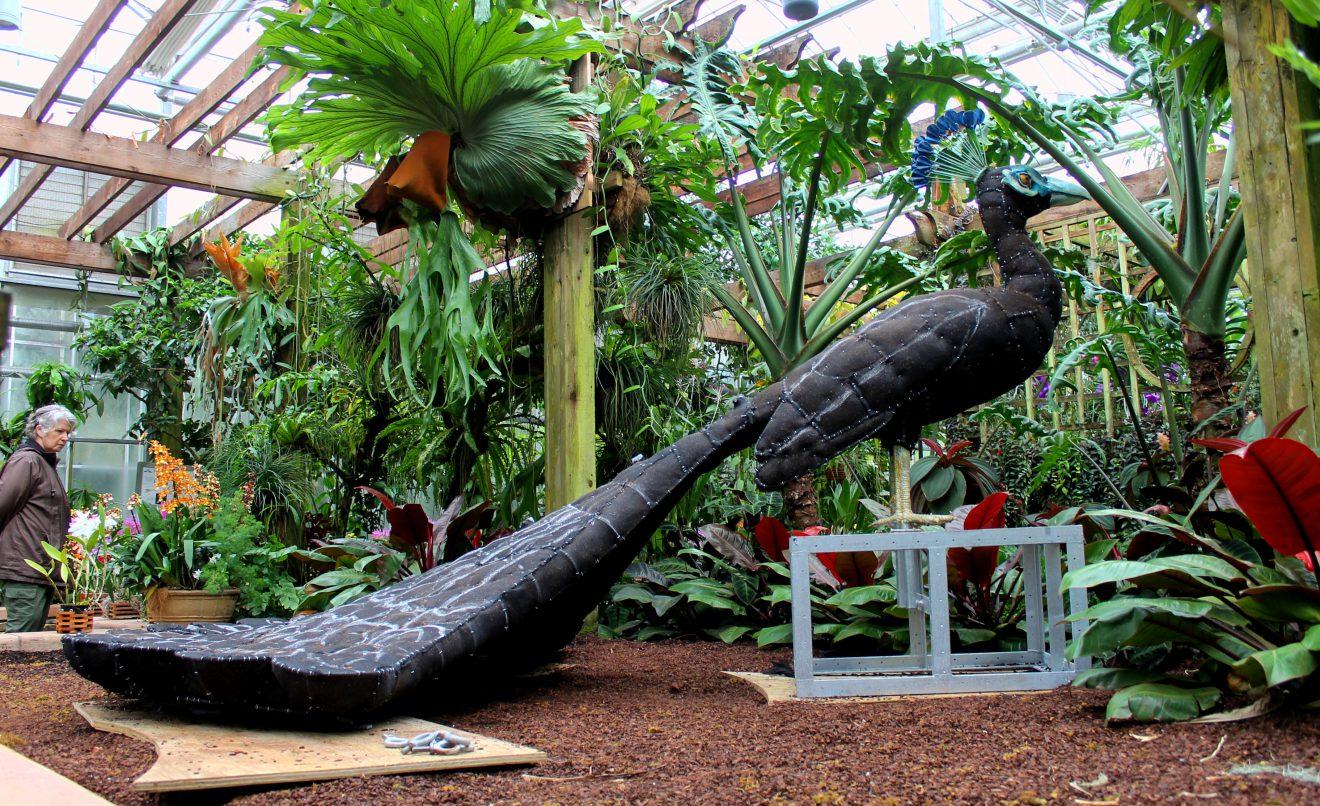 Plant Giants