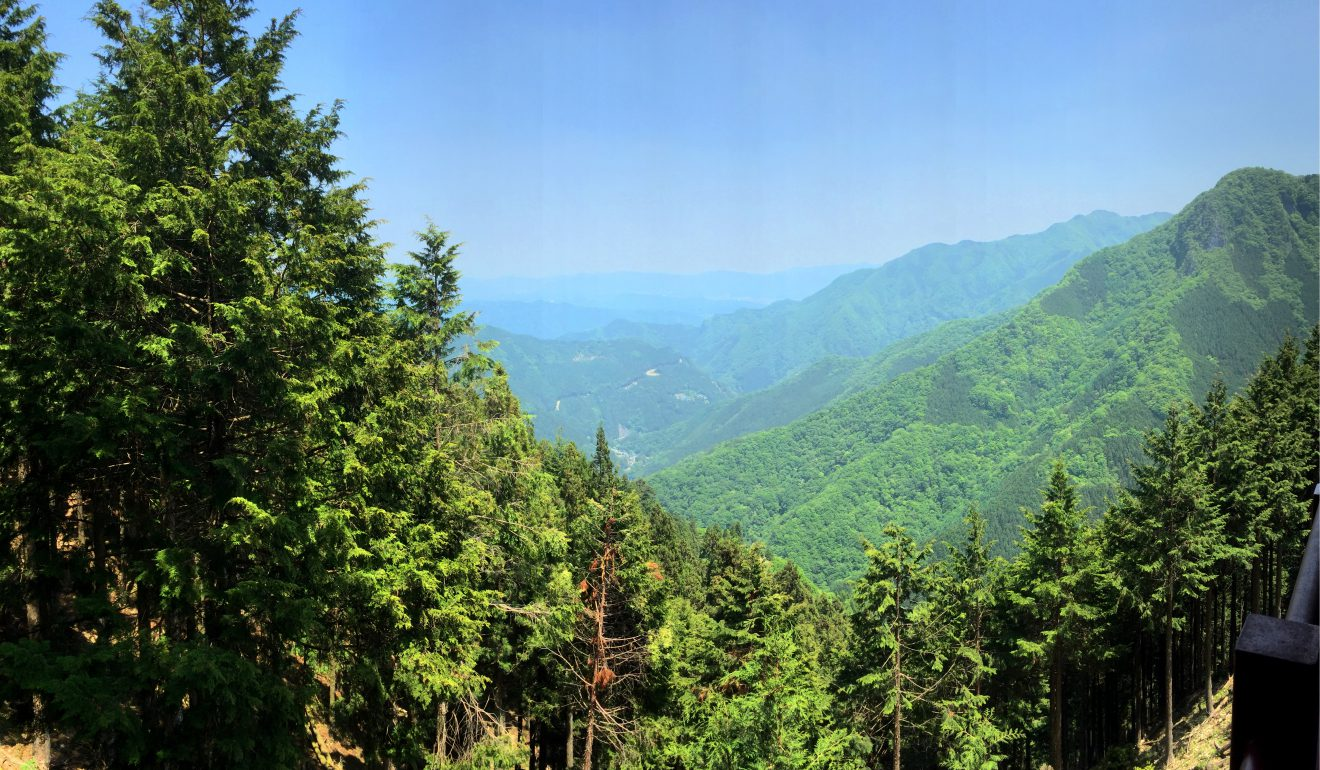 View from Mitsumine Shrine