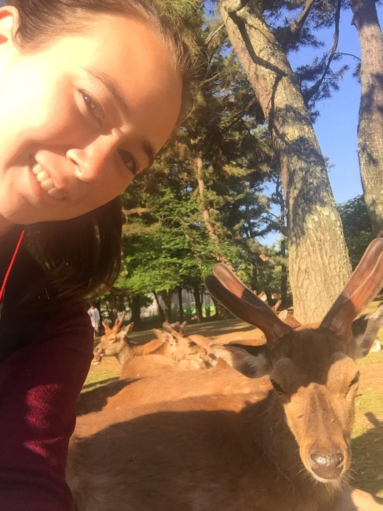 Nara is famous for its deer