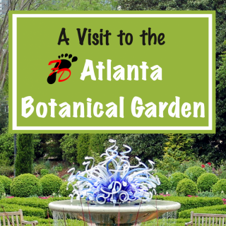 A Visit to the Atlanta Botanical Garden