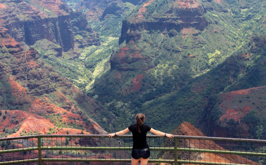 Waimea Canyon Lookout Platform | Footsteps of a Dreamer