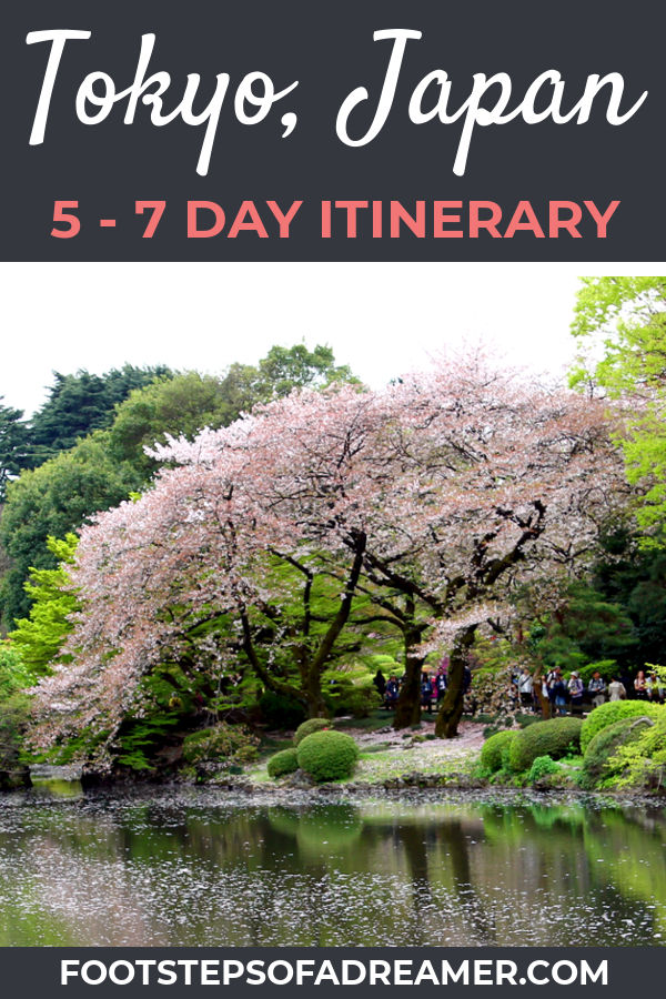 A 5 - 7 Day Tokyo Itinerary | Footsteps of a Dreamer