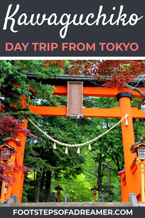 Mt Fuji Kawaguchiko Day Trip   Footsteps of a Dreamer