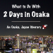 The Best of Osaka: A 2 Day Osaka Itinerary